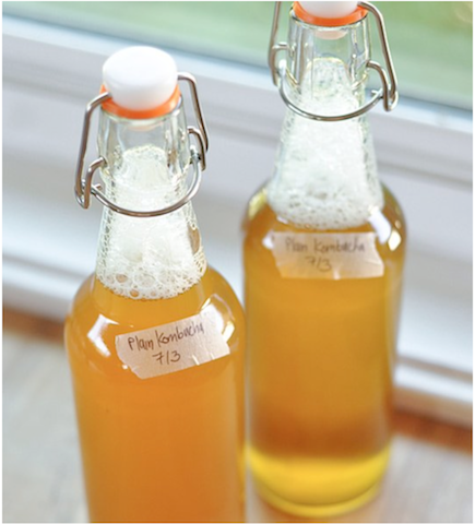 Kombucha Glass Bottles Top Fermented Foods