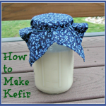 Miso – More Than An Appetizer. Kefir Bests Yogurt. Top 12 Fermented Foods List Continues.