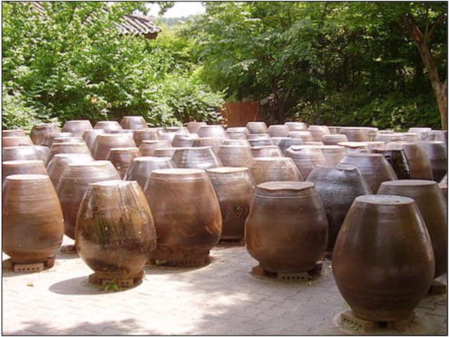 Buried Ceramic Jars Top Fermented Foods