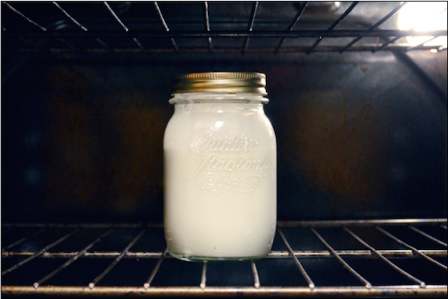 Coconut Yogurt-Top Fermented Foods