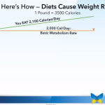 Diets Cause Weight Re-Gain Video